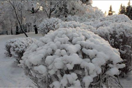 В Башкирии ожидается усиление ветра до 17 метров в секунду