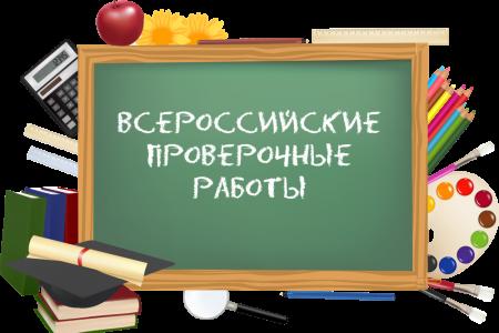 В сети опубликованы варианты проверочных работ для учеников 4-7 и 11 классов