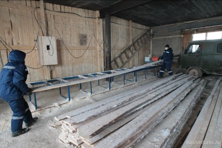 В Караидельском районе Башкирии откроют цех по производству пиломатериалов на экспорт