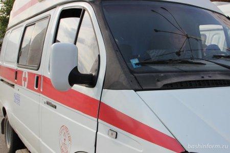 В Башкортостане на 10-летнюю девочку набросился алабай, ребенка госпитализировали