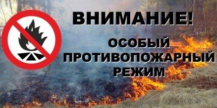 В Башкортостане введен особый противопожарный режим