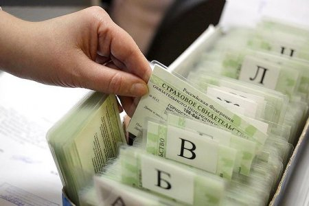 В России отменили бумажные СНИЛС