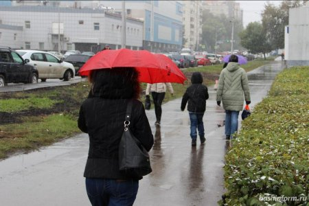 В Башкортостане потеплеет до 11 градусов