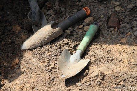 В Уфе в лесном массиве по улице Зорге обнаружили человеческие останки