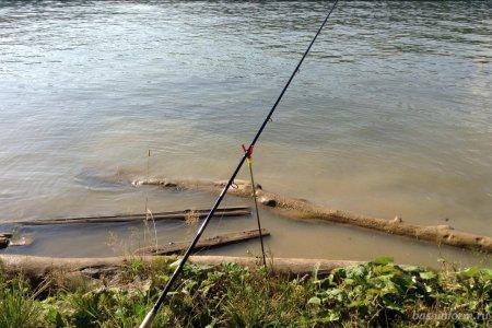 В Башкортостане принят закон о любительской рыбалке