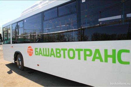Колесо, Акбузат, стрелка, тамга — жители Башкортостана выбирают логотип транспорта