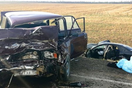 В ГИБДД Башкортостана сообщили подробности ДТП, в котором погибла женщина и пострадала семья