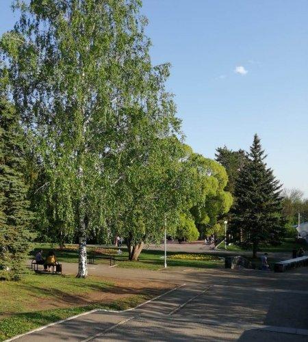 В Башкортостане в ближайшие три дня сохранится аномально жаркая погода