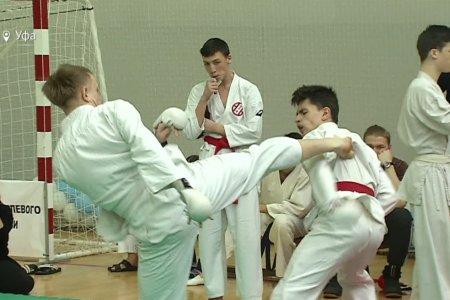 В Уфе пройдут II открытые Евразийские игры боевых искусств