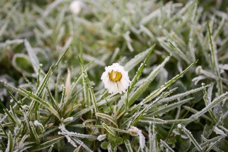 В Башкортостане прогнозируются заморозки до -2 градусов