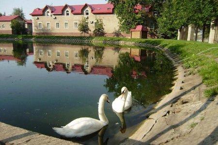 В Уфе в сад имени Аксакова вернулись лебеди