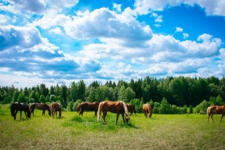 В Башкортостане грядет потепление