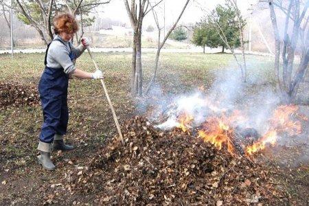 В Башкортостане введут штрафы за сжигание мусора и листьев в общественных местах