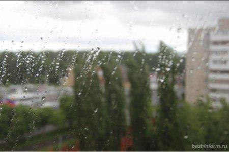 МЧС Башкортостана предупреждает жителей республики о сильном ветре