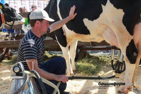 115 начинающих фермеров Башкортостана получат гранты «Агростартап»