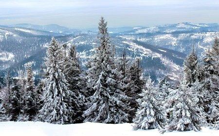 Какой будет зима в Башкортостане - Росгидромет озвучил предварительные прогнозы