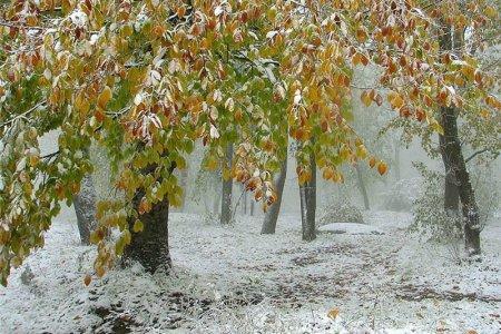 В Башкортостане прогнозируется временное установление снежного покрова