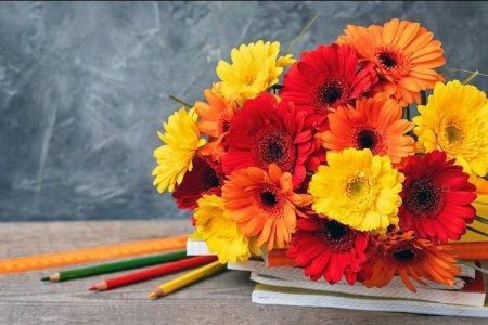 Глава Башкортостана поздравил учителей с профессиональным праздником
