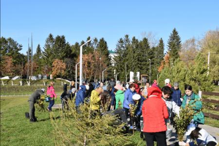 «Зеленая Башкирия»: за один день 138 тысяч жителей республики посадили 69 тысяч деревьев
