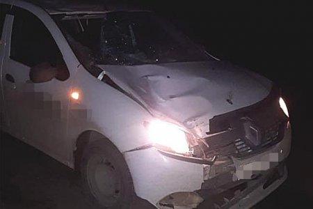 В Башкортостане водитель Renault Logan насмерть сбил пешехода