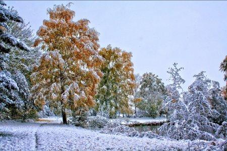 МЧС Башкортостана предупреждает о похолодании и установлении снежного покрова