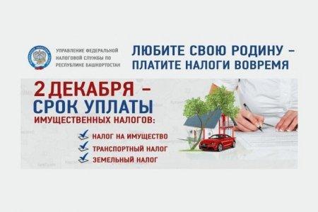 2 декабря истекает срок уплаты имущественных налогов – УФНС по Башкортостану