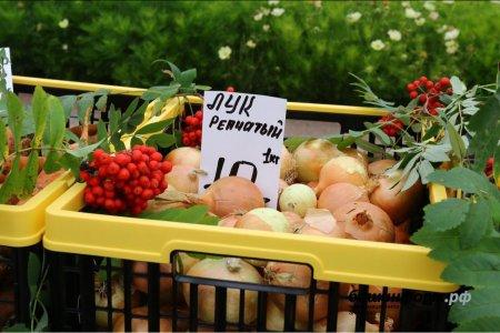 9 и 10 ноября уфимцев приглашают на очередные сельхозярмарки