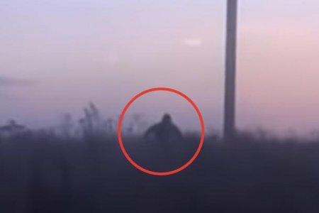В Башкирию прибыли ученые для поисков снежного человека, попавшего на видео