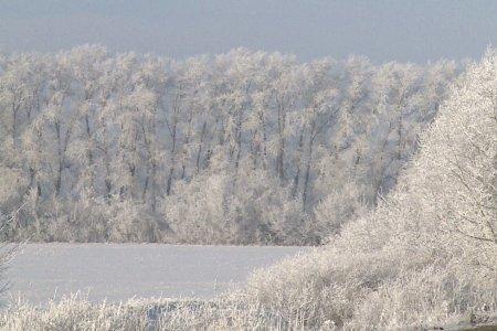 В Башкортостане ожидаются морозы до минус 27 градусов
