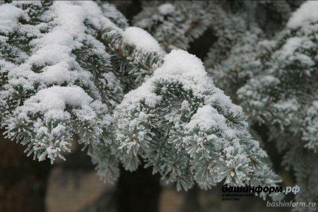В Башкортостане в новогоднюю ночь ожидается снегопад