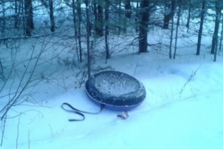 Катались с горки: в Уфе пенсионер с внучкой влетели в дерево на тюбинге, мужчина погиб