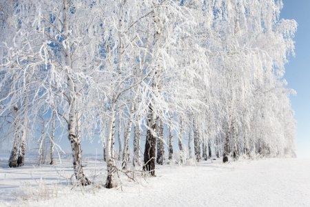 В выходные в Башкортостане похолодает до минус 17 градусов