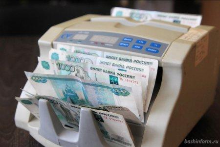 В Башкортостане начал действовать налог на профессиональный доход