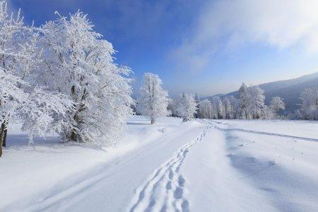 В Башкортостане к концу недели похолодает до -15 градусов