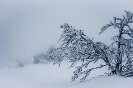 Сильный ветер и метель: МЧС Башкортостана предупреждает об ухудшении погодных условий