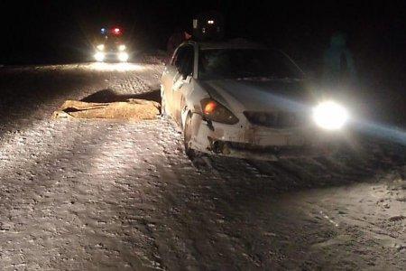 В Башкортостане водитель сбил на трассе двух пенсионерок, одна из них скончалась