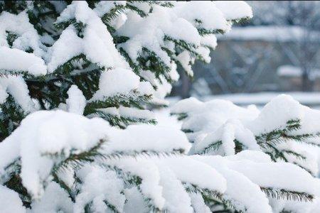 В Башкортостане кратковременные морозы сменятся потеплением
