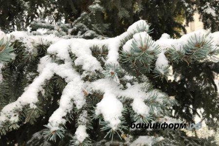 В Башкортостане в ближайшие дни прогнозируется теплая погода