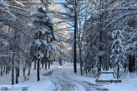 Какой будет погода в Башкортостане до конца февраля: предварительный прогноз