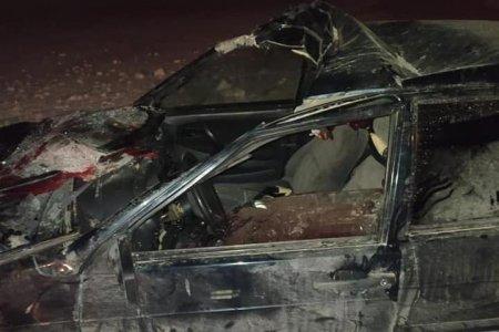 Сбил лошадь и умер в больнице: ГИБДД по Башкортостану сообщило подробности смертельного ДТП