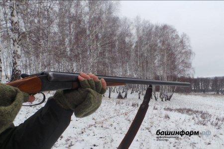 Браконьеры застрелили и бросили двух косуль в Куюргазинском районе Башкортостана