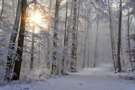«Буря»: МЧС Башкортостана предупреждает о снегопаде и сильном ветре