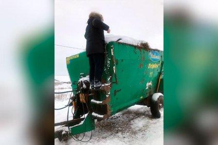 В Башкортостане работника фермы затянуло в кормоизмельчитель и раздробило