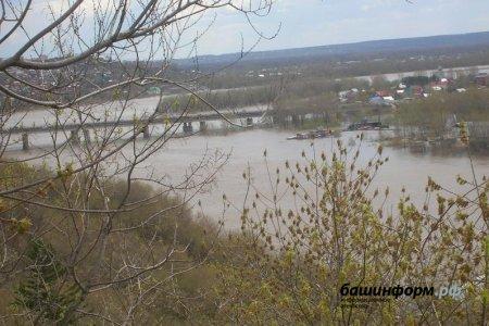 Мартовское тепло может вызвать в Башкортостане ранний и сильный паводок