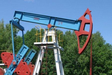Мировые цены на нефть упали на 42 процента
