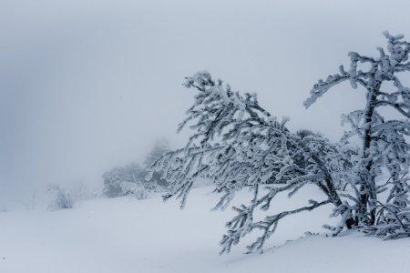 Жителей Башкортостана предупреждают о мокром снеге и шквалистом ветре
