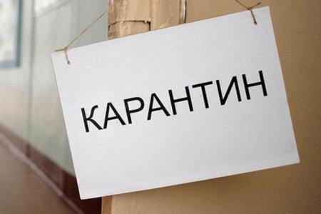 Все прибывающие в Россию будут помещены под 14-дневный карантин