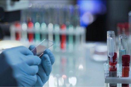 Как жителям Башкортостана сдать тест на COVID-19 в частных лабораториях и сколько это стоит?