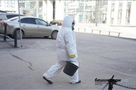 В Башкортостане число инфицированных новым коронавирусом возросло до 213